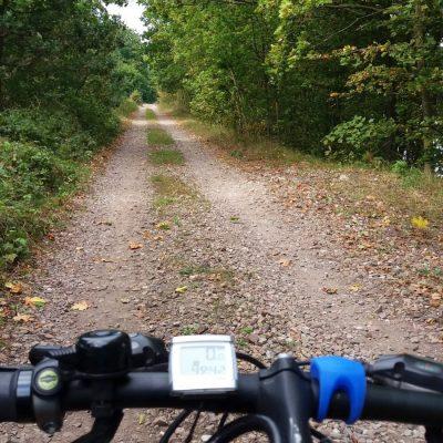 Blisko 10-kilometrowa ścieżka rowerowa śladem dawnej linii kolejowej łączy Ostródę z Miłomłynem. Tutaj fragment prowadzący przesmykiem przedzielającym jez. Drwęckie