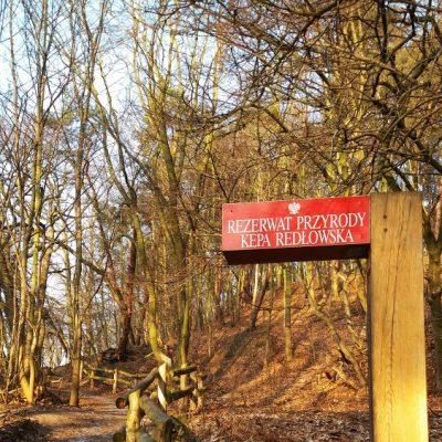 Szlak spacerowy na terenie rez. Kępa Redłowska.