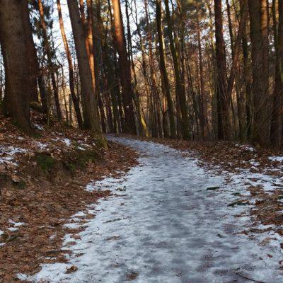 Na czerwonym szlaku pieszym w rejonie Kamiennego Potoku (okolice ul. Kujawskiej).