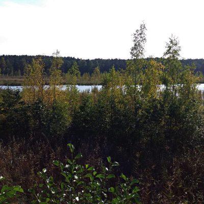 Widok z platformy obserwacyjnej na jezioro Karas nie powala...