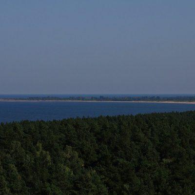 Widok z tarasu zbiornika Kazimierz na rezerwat Mewia Lacha